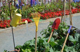 Ogródki Działkowe i Rekreacyjne