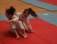 International Karate Open
