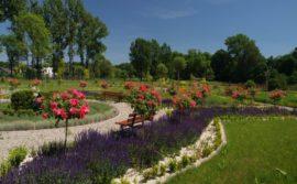 Rozbudowa Centrum Edukacji Przyrodniczej i Ekologicznej Śląskiego Ogrodu Botanicznego w Mikołowie-etap II