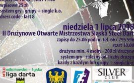 II Drużynowe Otwarte Mistrzostwa Śląska Steel Dart