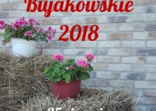 Dożynki w Bujakowie