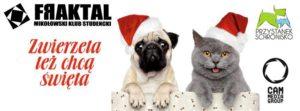 Zwierzęta chcą mieć święta – zbiórka dla Fundacji Przystanek Schronisko