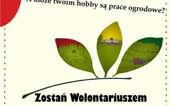 Zostań Wolontariuszem Śląskiego Ogrodu Botanicznego